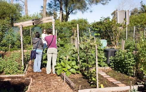 Horticulture community college sydney australia