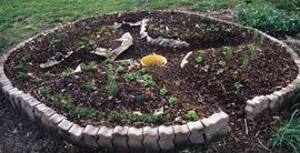 Narrow paths provide access into this small circular garden bed.