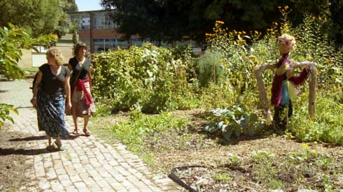 The well made path at Turning Circle Community Garden in Melbourne is wide enough for groups to pass along unimpeded.