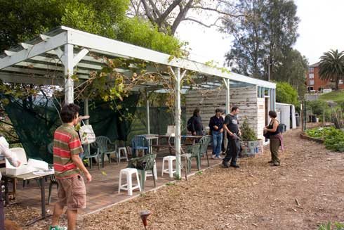 The pergola at Randwick Community Orgnic Garden is being extended with recycled timber to include a nursery and storage room.