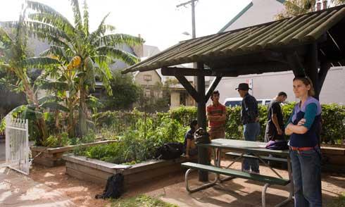 The minimalist shelter at Newtown Community Garden.