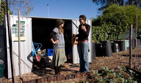 Community gardener Emma Daniell (left) talks with Kristina, another gardener, by the simple, metal, lockable tool storage shed at Randwick Organic Community Garden. Note the compost bin farm to the side. The bins belong to allotment holder and complement other, communal bins in producing compost for the garden. Note, too, the roofing tile seconds placed placed on edge as weedproof garden bed edges.