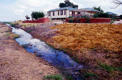 A swale at Fairfield City Farm, Sydney, prior to the mulched area above being planted to vegetables. The brick structure on the left is a 'worm wall', probably the longest worm farm in the southern hemisphere.