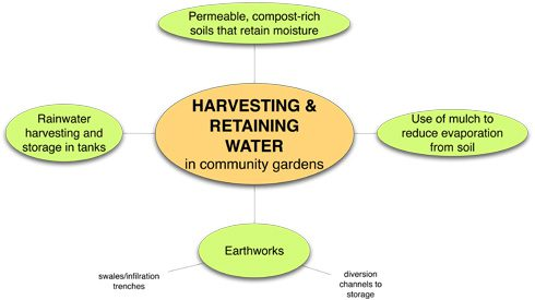 water-harvsting-in-cg